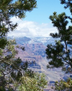 canyon_mar_2007 015